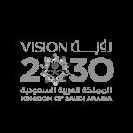 saudi-vision-2030-seeklogo.com copy